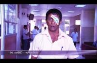 Distribution of free eye Lenses