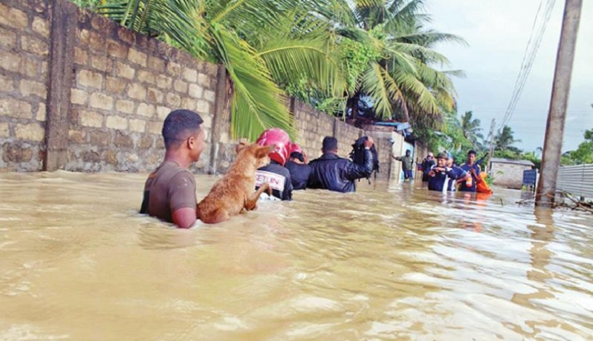 Floods in the North : Armed Forces' swift action saves many lives