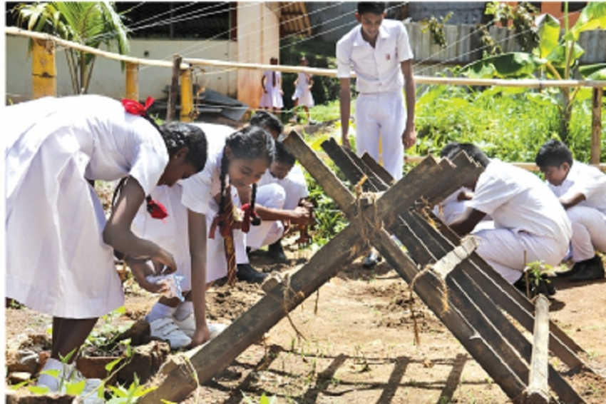 ADB's $ 200m education development program ends in Feb