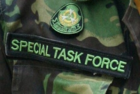 Over 300 STF constables promoted as sergeants