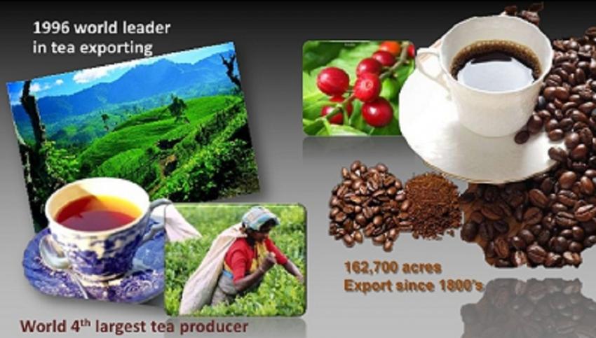 Lanka exports to USA reach US$ 3 bn mark