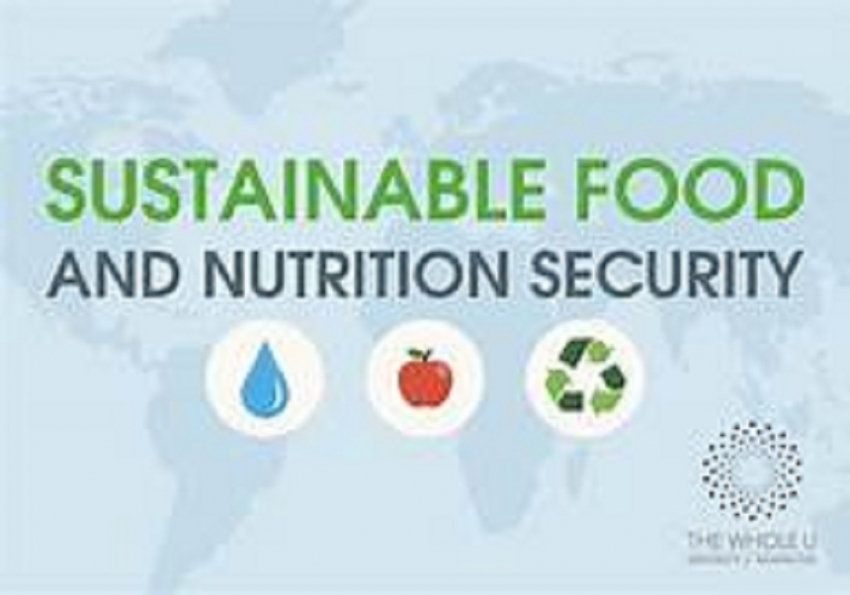 Achieving sustainable food security : Country needs an overarching agriculture policy