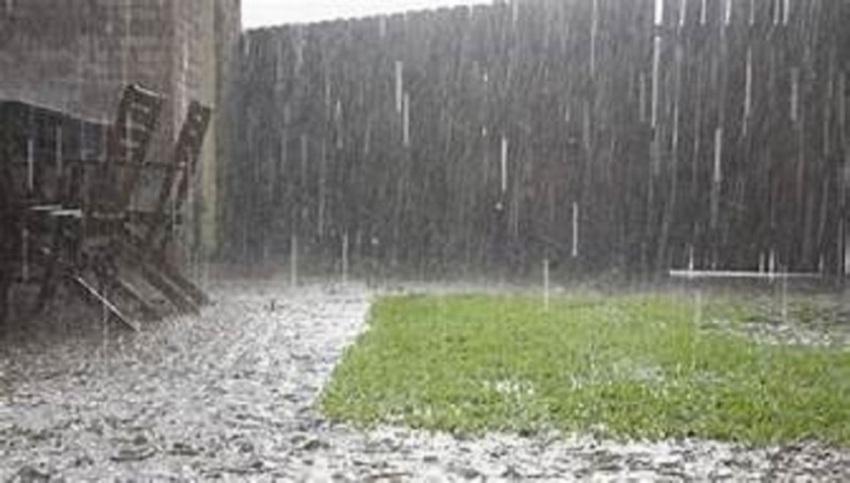 Rain enhance from tomorrow