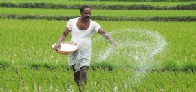 Govt. to deposit cash to farmers' bank accounts for fertilizer