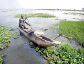 Each district given Rs. 5 million to remove invasive aquatic plants