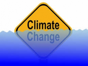 Climate Change Program jointly by UNDP, Economic Development Ministry