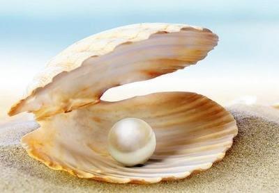 NARA decides to reinitiate pearl culture