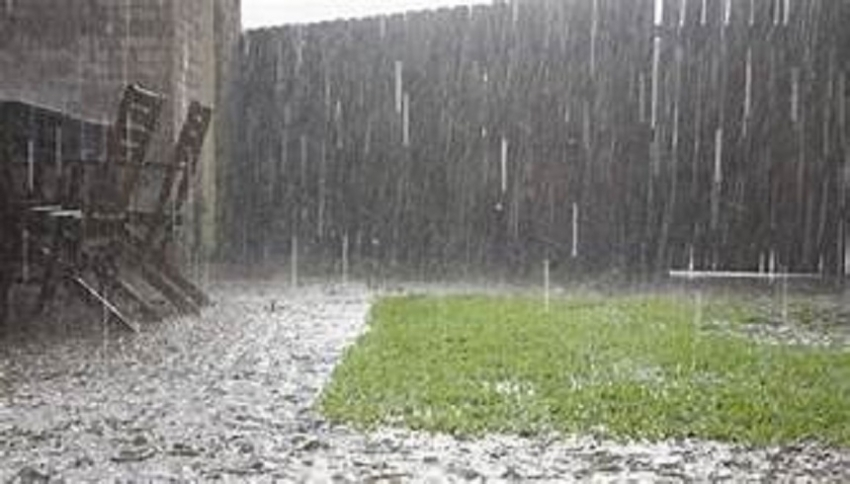 Prevailing showery condition continue