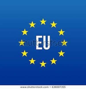 EU says fundamental freedoms and civic rights respected during election
