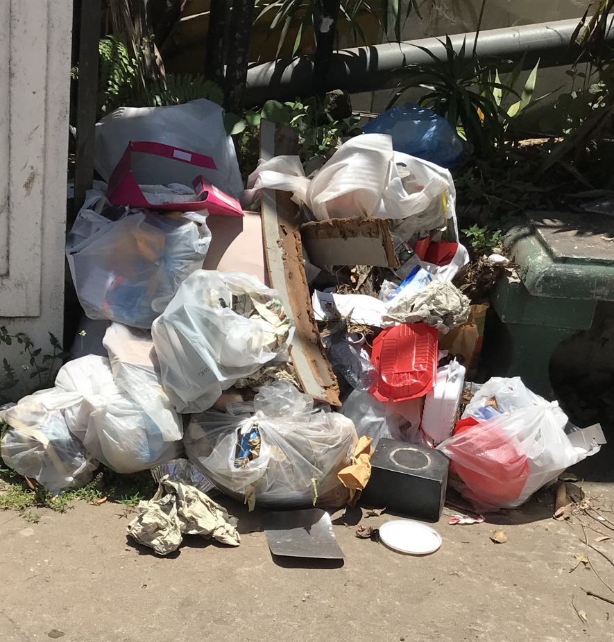 Environmental Foundation calls for a levy on single-use plastic