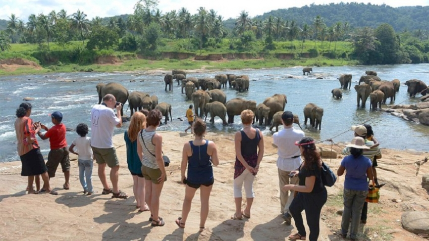 Tourist arrivals up 16.8% in November