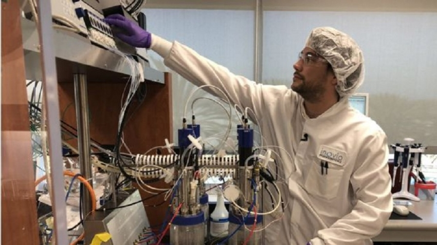 Coronavirus: Scientists race to develop a vaccine