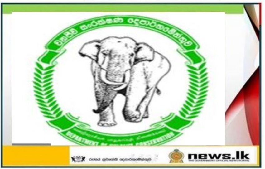 Wildlife circuit bungalows, guest houses and campsites of Wildlife Conservation Department temporarily closed