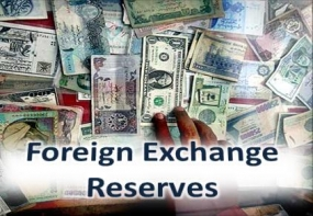 Lanka's forex reserve increases to US$ 7.9 bn in February