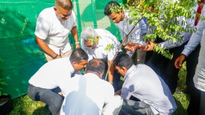 President joins with National Tree Planting Programme