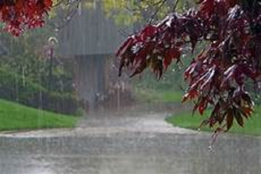 Showery condition is continue in South-western parts next few days