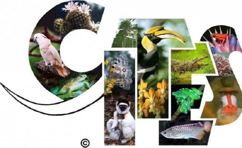 Lanka to host meeting to highlight global threat to wild animals, plants
