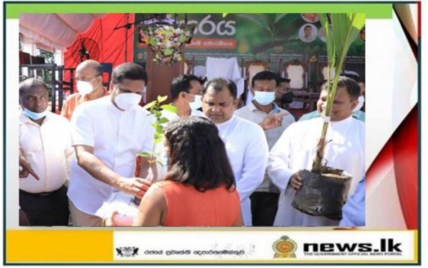 "The Program to plant 2 million saplings themed ""Surakumata Parisaraya"" commences"