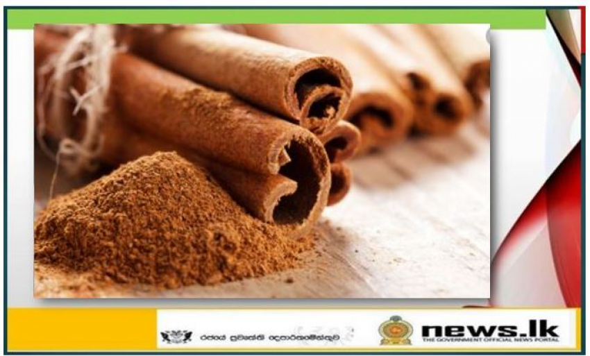 Sri Lanka Embassy finalises certification for export of Sri Lankan Cinnamon in bark form to Brazilian market