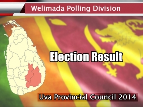Uva Provincial Council Elections 2014: Welimada PD