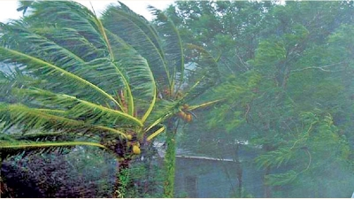 Severe wind gusts, heavy rain alert
