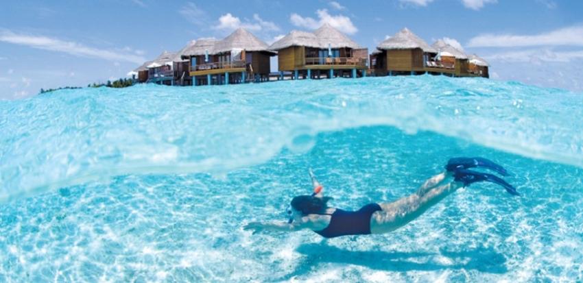 Maldives seeks whistleblowers